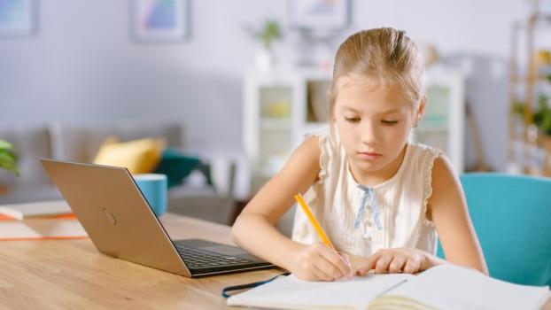 scoala online elev pandemie