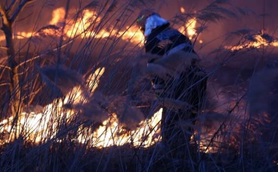 incendiu-vegetatie-850x527