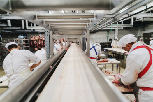 Workers,At,Meet,Industry,Handle,Meat,Organizing,Packing,Shipping,Loading